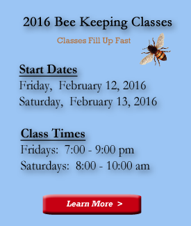 Next-Beekeepers-Class4_2016.png.bacaa725