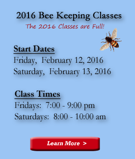 Next-Beekeepers-Class4_2016-Classes-are-