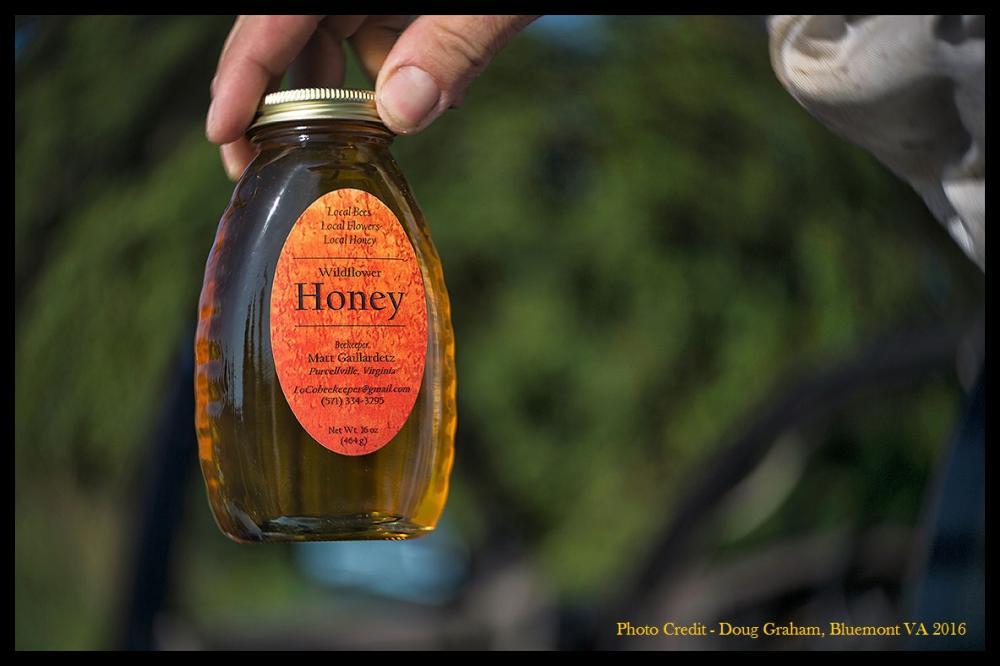 Honey.jpg.f77e621a1c07cd98a0c310402d5341d0.jpg