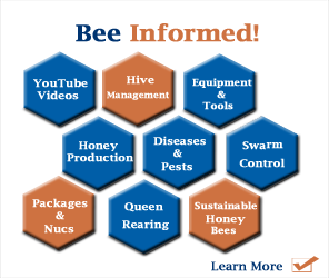 Bee-Informed1_whitebkg_OrngBlue296x250.png