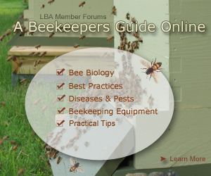 A-Beekeepers-Guide-3_101816.png