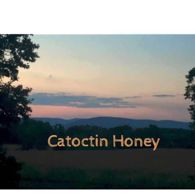 catoctin-honey-mtn-view.jpg